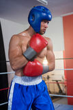 Young male boxer wearing blue headgear stock photography