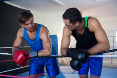 Young male boxers leaning on rope. Young male boxers leaning on boxing ring rope Stock Image