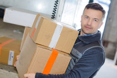 Young male carrying moving boxes Stock Image