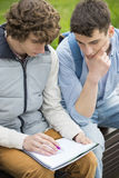Young male college friends studying together in park royalty free stock images