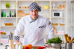 The young male cook working in the kitchen Royalty Free Stock Photos