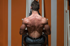 Young Male Doing Back Exercises In The Gym Royalty Free Stock Photography