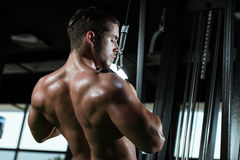 Young Male Doing Back Exercises In The Gym Royalty Free Stock Images