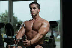 Young Male Doing Back Exercises In The Gym Stock Photos