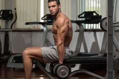 Young Male Doing Biceps Exercises In The Gym. Fit Athlete Working Out Biceps - Dumbbell Concentration Curls stock photo
