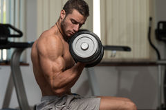 Young Male Doing Biceps Exercises In The Gym Stock Photo