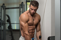 Young Male Doing Triceps Exercises In The Gym Royalty Free Stock Image