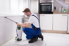 Exterminator Worker Spraying Insecticide Chemical. Young Male Exterminator Worker Spraying Insecticide Chemical In Kitchen Stock Image
