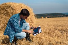 A young male farmer agronomist botanist studies mowed hay with a magnifying glass and a tablet in a field against a haystack backg. Young male farmer agronomist stock image