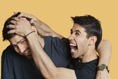 Young male friends playfighting over colored background Royalty Free Stock Image