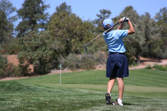 Young male hitting golf ball. Young male  with blue shirt hitting ball on green with flag visible, focus on golfer Stock Photos
