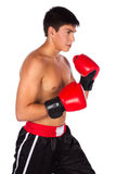 Young male kickboxer Royalty Free Stock Photos