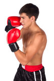 Young male kickboxer Stock Photography