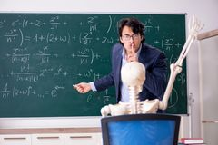 The young male math teacher and student skeleton. Young male math teacher and student skeleton royalty free stock photos
