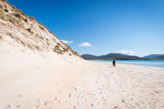 Young male photographer with dreadlocks at a sunny white sand beach. With high sand dunes, Luskentyre, Isle of Harris, Hebrides, Scotland royalty free stock photos