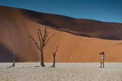Young male photographer taking photo of dead tree in deadvlei. Young male photographer and traveler taking photo of dead tree in deadvlei Sossusvlei during Royalty Free Stock Images