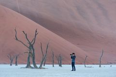 Young male photographer taking photo of dead tree in deadvlei. Young male photographer and traveler taking photo of dead tree in deadvlei Sossusvlei, famous Royalty Free Stock Photos