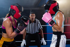 Young male referee looking at female boxers Royalty Free Stock Photos