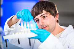 Young male researcher carrying out scientific research in a lab Royalty Free Stock Photos