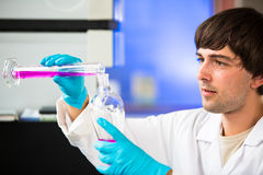 Young male researcher carrying out scientific research in a lab Stock Images