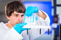 Young male researcher carrying out scientific research in a lab Royalty Free Stock Image