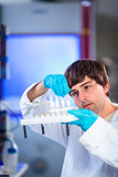 Young male researcher Stock Photography