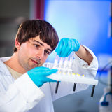 Young male researcher Royalty Free Stock Photos