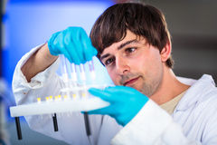 Young male researcher Stock Image