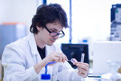 Young male researcher  in a chemistry lab Royalty Free Stock Photo