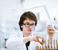 Young, male researcher/chemistry student Royalty Free Stock Images