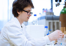 Young, male researcher/chemistry student Stock Image