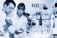 Health care professionals microscoping in scientific laboratory. Royalty Free Stock Image