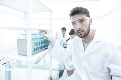 Young male scientist looking at a sample in a test tube side vie. Side view portrait of a scientist, uses a test tube and looking at the camera while working on Royalty Free Stock Images