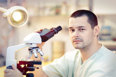 Young Male Scientist with Microscope. Portrait of a male doctor looking through a microscope in a laboratory Stock Images