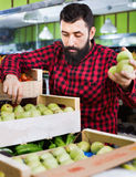 Young male seller offering pears Stock Image
