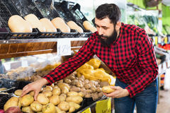 Young male seller offering potatoes. Glad cheerful positive male seller offering potatoes in grocery shop Stock Image