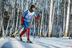 Young male skier classic style in a winter birch forest on trails. Chelyabinsk, Russia -  December 19, 2015: young male skier classic style in a winter birch Royalty Free Stock Image