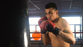 Young male sportsman athlete training in boxing gym. Boxer in red gloves stock video footage