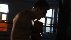 Young male sportsman athlete training in boxing gym. Boxer in red gloves stock footage