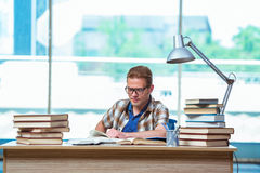 The young male student preparing for high school exams Stock Photos