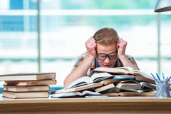 The young male student preparing for high school exams. Young male student preparing for high school exams Royalty Free Stock Images