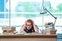 The young male student preparing for high school exams Stock Photography