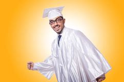 Young male student  Stock Image
