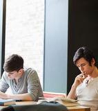 Young male students working Stock Photos