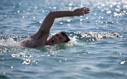 Young male swimmer Stock Photos