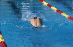Young Male Swimmer Royalty Free Stock Photo