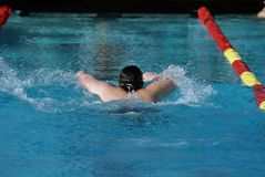 Young Male Swimmer Stock Image
