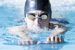 Young male swimmer swimming with a swim board. Closeup of a male swimmer swimming with a swim board doing leg exercises in an indoor swimming pool - focus on the Royalty Free Stock Images