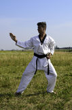Young male taekwondo fighter Royalty Free Stock Photo