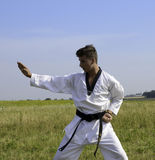 Young male taekwondo fighter attacking Stock Photos